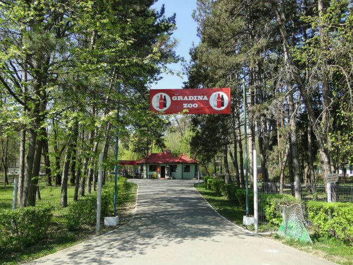 """Administratia Parcului Memorial """"Constantin Stere"""" Ploiesti angajeaza medic veterinar pentru adapostul de caini"""