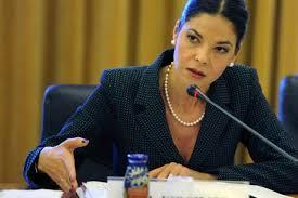 Guvernul infiinteaza un Comitet interministerial care sa sustina parteneriatul strategic cu Statele Unite