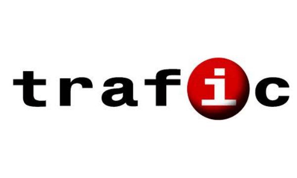 Serviciile Trafic.ro incep sa dispere clientii din IT. Pentru ce se platesc abonamentele de monitorizare?