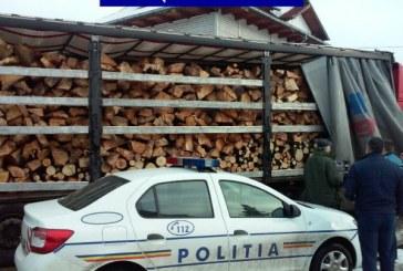 Prahova: Nici fabricile de prelucrare a lemnului nu respecta legea. Amenzi la unitati din Breaza si Maneciu