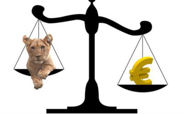 Cursul euro/ leu a atins un nivel record. Probleme pentru cei care au credite in moneda europeana